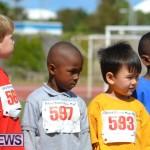2013 telford mile race bermuda (17)