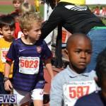 2013 telford mile race bermuda (19)