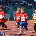 2013 telford mile race bermuda (34)