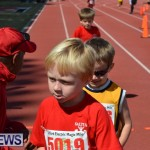 2013 telford mile race bermuda (35)
