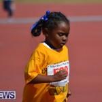 2013 telford mile race bermuda (4)