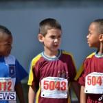 2013 telford mile race bermuda (41)