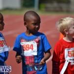 2013 telford mile race bermuda (43)
