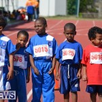 2013 telford mile race bermuda (47)