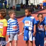 2013 telford mile race bermuda (48)
