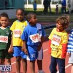2013 telford mile race bermuda (49)