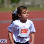 2013 telford mile race bermuda (5)
