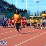 2013 telford mile race bermuda (57)