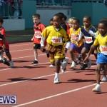 2013 telford mile race bermuda (58)