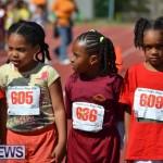 2013 telford mile race bermuda (61)