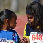 2013 telford mile race bermuda (73)