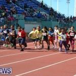 2013 telford mile race bermuda (75)