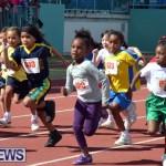 2013 telford mile race bermuda (77)