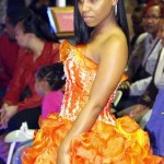 Dreams Visions Realities Fashion Show, Bermuda February 16 2013 (133)