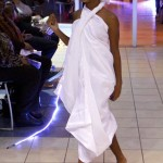 Dreams Visions Realities Fashion Show, Bermuda February 16 2013 (3)