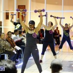 Dreams Visions Realities Fashion Show, Bermuda February 16 2013 (58)