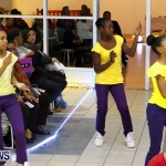 Dreams Visions Realities Fashion Show, Bermuda February 16 2013 (63)