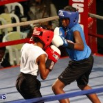 Fight Night 15 The Rematch Berkeley Institute Bermuda, February 2 2013 (5)