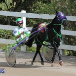 Harness Pony Racing Champions, Bermuda February 10 2013 (1)