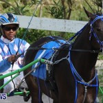 Harness Pony Racing Champions, Bermuda February 10 2013 (10)