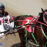 Harness Pony Racing Champions, Bermuda February 10 2013 (11)