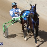 Harness Pony Racing Champions, Bermuda February 10 2013 (12)