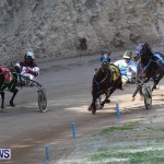 Harness Pony Racing Champions, Bermuda February 10 2013 (13)