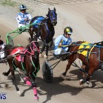 Harness Pony Racing Champions, Bermuda February 10 2013 (16)