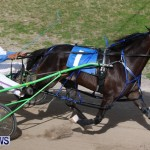Harness Pony Racing Champions, Bermuda February 10 2013 (17)