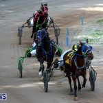Harness Pony Racing Champions, Bermuda February 10 2013 (18)