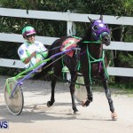 Harness Pony Racing Champions, Bermuda February 10 2013 (2)