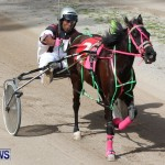 Harness Pony Racing Champions, Bermuda February 10 2013 (21)
