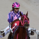 Harness Pony Racing Champions, Bermuda February 10 2013 (23)