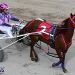 Harness Pony Racing Champions, Bermuda February 10 2013 (24)