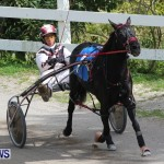 Harness Pony Racing Champions, Bermuda February 10 2013 (3)
