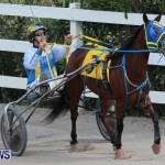 Harness Pony Racing Champions, Bermuda February 10 2013 (7)
