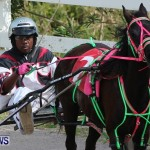 Harness Pony Racing Champions, Bermuda February 10 2013 (9)