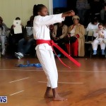 Sensei Roots Shiai 18, Karate Bermuda February 10 2013 (14)