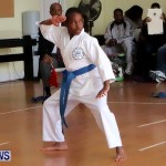 Sensei Roots Shiai 18, Karate Bermuda February 10 2013 (19)