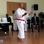 Sensei Roots Shiai 18, Karate Bermuda February 10 2013 (28)