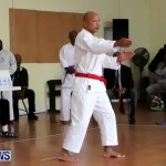 Sensei Roots Shiai 18, Karate Bermuda February 10 2013 (29)