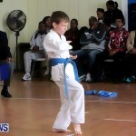 Sensei Roots Shiai 18, Karate Bermuda February 10 2013 (3)