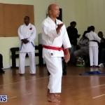 Sensei Roots Shiai 18, Karate Bermuda February 10 2013 (30)