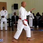 Sensei Roots Shiai 18, Karate Bermuda February 10 2013 (31)