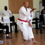 Sensei Roots Shiai 18, Karate Bermuda February 10 2013 (35)