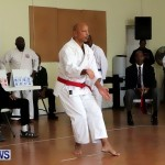 Sensei Roots Shiai 18, Karate Bermuda February 10 2013 (36)