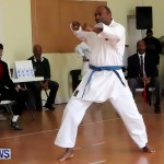 Sensei Roots Shiai 18, Karate Bermuda February 10 2013 (38)