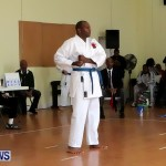 Sensei Roots Shiai 18, Karate Bermuda February 10 2013 (40)