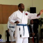 Sensei Roots Shiai 18, Karate Bermuda February 10 2013 (41)