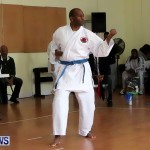 Sensei Roots Shiai 18, Karate Bermuda February 10 2013 (42)